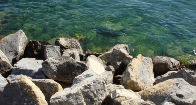 Lac Leman Area
